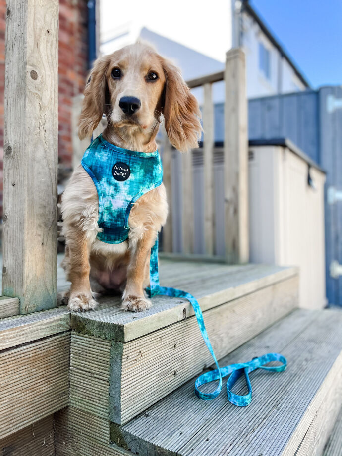 Pet Pooch Boutique Army Bandana for Dog, Medium/Large