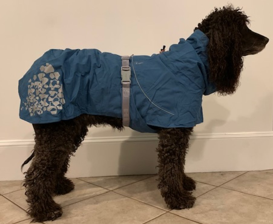 Hurtta Monsoon Dog Coat RETAIL $97