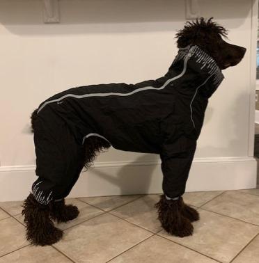 Hurtta Downpour Suit RETAIL $126