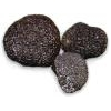Truffles from Acqualagna