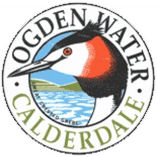 Ogden Water