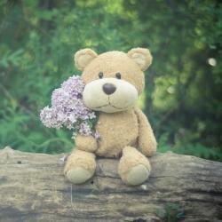 Soft Cotton Teddy Bear