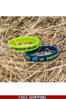 Friends of the Dartmoor Hill Pony Wrist Bands