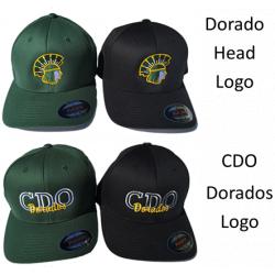 Embroidered Flexfit Hat