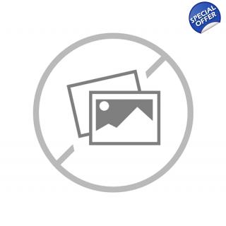 The Prophet's Seal