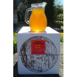 Still strong 7% pure juice dry Normandy Cider 20 litre BiB approx 35 pints