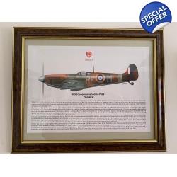 Spitfire MKIIB P8331 Su..