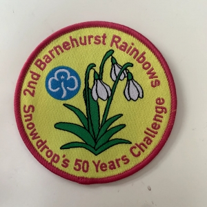 Snowdrop's 50 Years Challenge