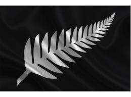 N | SILVER FERN ON BLACK
