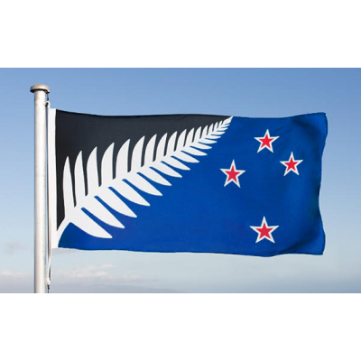 c | MEDIUM SILVER FERN FLAG