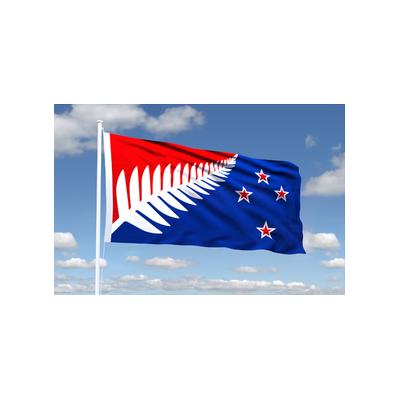 k | MEDIUM ORIGINAL SILVER FERN FLAG