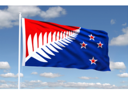 J | LARGE ORIGINAL SILVER FERN FLAG