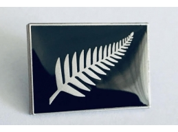O | SILVER FERN ON BLACK PIN