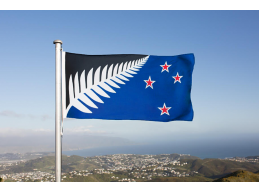 B | LARGE SILVER FERN FLAG
