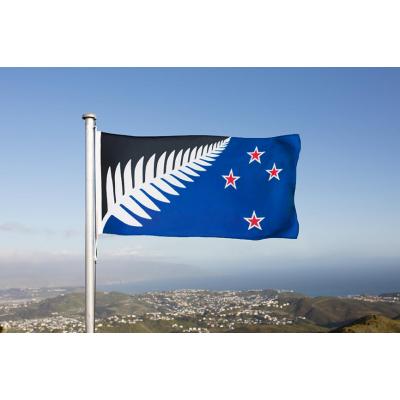b | LARGE SILVER FERN FLAG