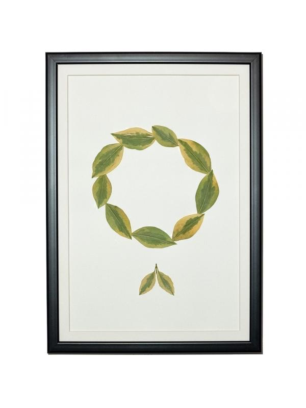 Herbarium MARET 21x29 cm